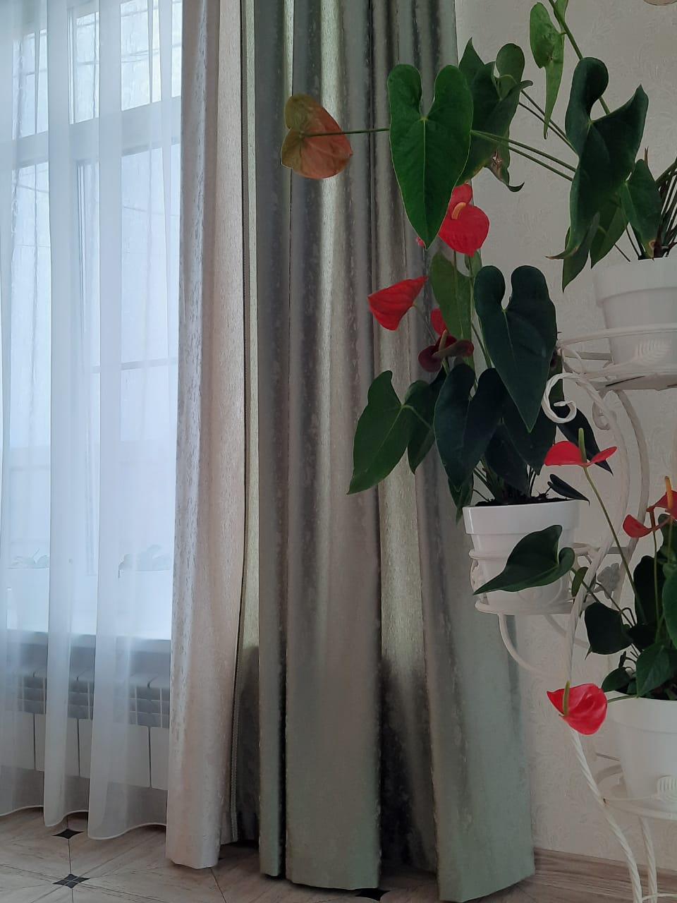 где сшить шторы на заказ в ростове